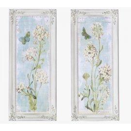 Dos cuadros Botánica marco Isabelino Blanco Decapé