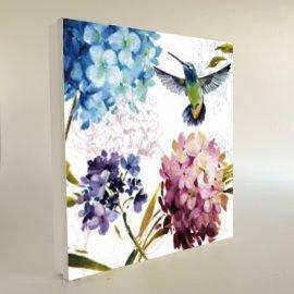 Cuadro cubre contador Hortensias y colibrí